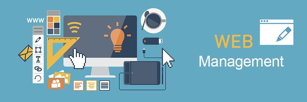 Digital marketing – Website management & SEO